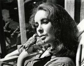 ELIZABETH TAYLOR / THE SANDPIPER (1965)