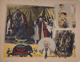 SALLY OF THE SAWDUST WITH W. C. FIELDS (1925)
